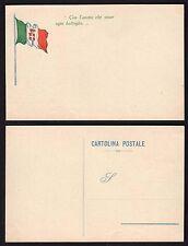 CARTOLINA Militare in franchigia 1916 NUOVA (FILs)