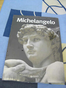 Michelangelo La Biblioteca dell'Arte