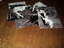 SHEILA LOT DE PHOTOS FORMAT 10*15 N&B - THEME 028 CHAISE LONGUE - 4 PRISES
