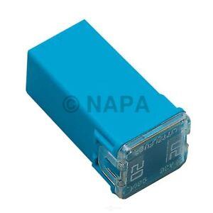 Battery Fuse-SRT-4 NAPA/BALKAMP-BK 7823045