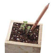 Pencil Plant Seeded - Write And Plant It - Gadget Eco Friendly - RANDOM PLANT
