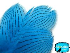 1 Dozen - Blue Silver Pheasant Plumage Barred Feathers Fly Tying Jewelry Costume