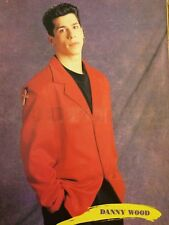 Danny Wood, New Kids on Block, Donnie Wahlberg, Double Full Page Vintage Pinup