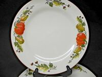 Harvest Pumpkin set of 3 Dinner Plates - New