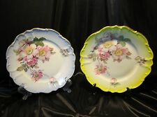 Pair Imperial Germany Hand Painted PLATE Porzellan Parbus Floral Roses Porcelain