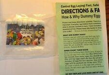 "New listing Finch Dummy Eggs, White Plastic Fake Bird Egg 5/8"" x 1/2"""