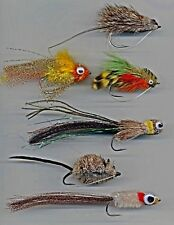 PIKE FLIES: une collection de Six modèles. crochet taille 3/0 & Assortiment de 4/0 (code 106 g)
