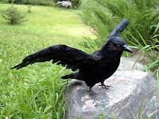 REALISTIC FLYING CROW REPLICA HAUNTED HOUSE HALLOWEEN PROP 161 FREE SHIPPING USA