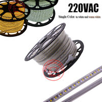 220VAC LED strip 2835 100led/M waterproof with Power Adapter Flexible 1m-20m