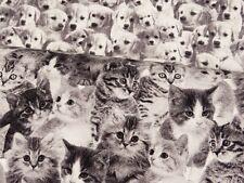 Stoff Baumwolle süße Katzen rot weiß grau 155cm breit