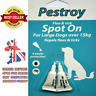 """BOB MARTIN """"PESTROY"""" SPOT ON Flea And Tick Treatment LARGE DOGS Over 15kg"""