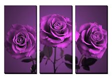 LARGE Purple Roses Flower Floral Triptych Canvasses NEW Picture Wall Art SET 3