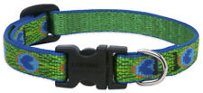 Lupine Collars and Leads 32634 1/2 X 8 -12 Tail Feathers Adjustable Cat Collar