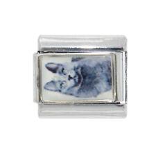 Grey Cat photo Italian charm - fits 9mm classic Italian charm bracelets