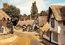 B97428 the old village isle of wight shanklin   uk