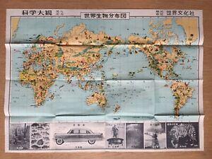 WORLD ANIMAL DISTRIBUTION MAP PICTORIAL MAP AFRICA CHINA US AUSTRALIA EU UK