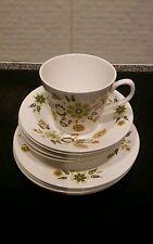 Queen Anne bone china Parisienne pattern. Trio plus 5 saucers & 3 teaplates. VGC