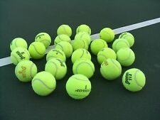 25 USED Tennis Balls ~ Dog Toy Catch Baseball~Walker Table Chair feet~FREE SHIP!