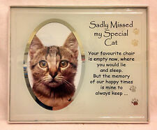Sadly Missed My Special Cat Memorial Photo Frame by Earth Angel Grave Care