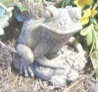 Latex frog mold with plastic backup frog sea rocks  garden mould