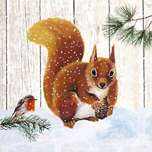ppd: 20 Servietten Robin & Squirrel 33 x 33 cm Eichhörnchen Winter Weihnachten