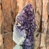 7.5cm 74g Veracruz Amethyst Crystal Stone Purple Quartz Cluster