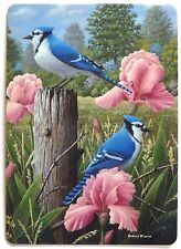 SWAP CARD. BLUE JAY BIRDS & PINK IRIS FLOWERS. ARTIST ROBERT WAVRA. WIDE. MINT