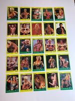 25 PRO BODYBUILDERS 1993 STAR Cards Bodybuilding Duffy Labrada Ichinose