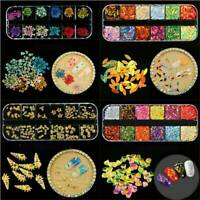 12 Colors High Quality Mixed Real Dried Flowers Nail Art Decoration DIY Tips