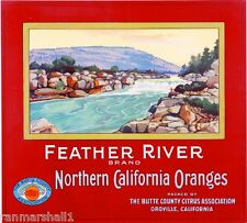 Oroville, Butte County Feather River Orange Citrus Fruit Crate Label Art Print