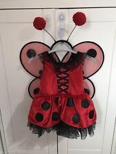 girls fancy dress red ladybird 24 months
