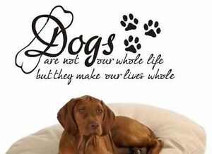 DOG BED CAT CUTE ANIMAL COOL WALL QUOTE VINYL DECOR STCKER STENCIL MURAL GRAPHIC