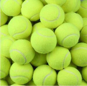 TENNIS BALLS SPORT PLAY CRICKET DOG TOY BALL OUTDOOR FUN BEACH LEISURE
