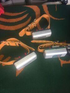 DT Systems Trainer 3 Dog Collar's Charger, Activator System Model 300 DT Case