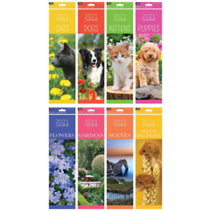 2021 Wall Planner  Month To View Spiral Bound Wall  Calendar 2021& 2022 Forward
