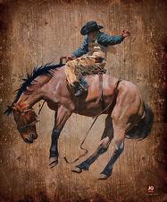 JQ Licensed Western Cowboy Luxury Plush Super Soft Queen Size Blanket--MG Bronco