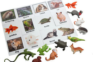 Montessori Pet Animal Match -Miniature Figurine w/ Matching Cards -2 Part Cards