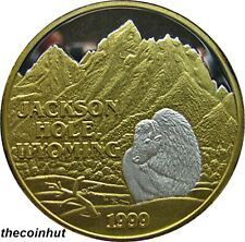 1 oz. .999 Silver Rare 1999 Jackson Hole Wyoming 24 K Gold Northwest Mint CH5140