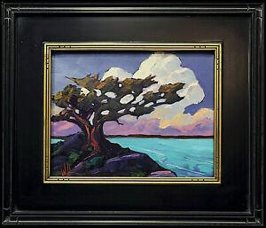 HAWKINS Framed Ocean Tree Coast Clouds Landscape Impressionism Oil Art  Painting