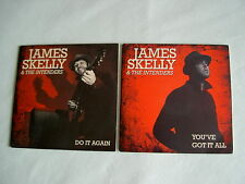 JAMES SKELLY & THE INTENDERS job lot of 2 promo CD singles Do It Again