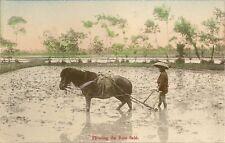 CARTE POSTALE ASIE JAPON JAPAN PLOWING THE RICE FIELD