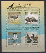 E405. Guinea - MNH - 2014 - Nature - Animals - Birds - Water