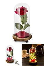 Red Silk Rose in a Glass Dome Home Lamp Decoration Beauty and the Beast