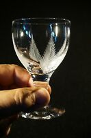 Beautiful Stuart Crystal Woodchester Wine Glass