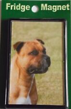 Red Staffordshire Bull Terrier Fridge Magnet