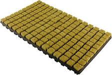 150er Grodan Anzuchtmatte mit 150 Steinwollblöcken 25x25mm im Stecktray