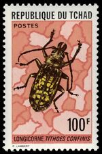 """CHAD 299 (Mi697) - Long-horned Beetle """"Tiothoes confinus""""  (pf35702)"""