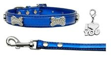 Metallic Blue Crystal Bone Collar and Leash with Chrome Heart Charm - Size Large
