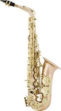 Alt-Saxophon Arnolds&Sons AAS-100G Goldmessing Korpus mit Koffer und Mundstück