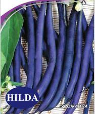 Asparagus bean HILDA Seeds snake bean organic seeds Ukraine 5 g